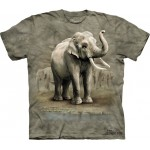 TEE SHIRT ELEPHANTS ASIE