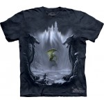 TEE SHIRT DRAGON DANS SA VALLEE