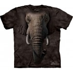 TEE SHIRT ENFANT  ELEPHANT