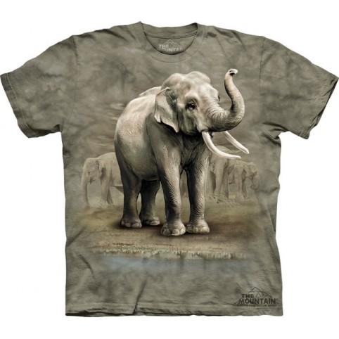 TEE SHIRT ENFANT ELEPHANTS ASIE