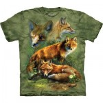 TEE SHIRT ENFANT RENARDS