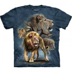 TEE SHIRT ENFANT LIONS