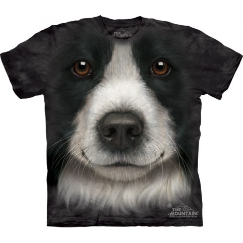 TEE SHIRT ENFANT BORDER COLLIE