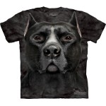 TEE SHIRT ENFANT PITBULL