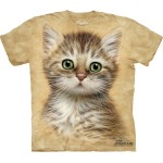 TEE SHIRT ENFANT CHATON MARRON RAYE