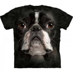 TEE SHIRT ENFANT BOSTON TERRIER