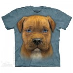 TEE SHIRT CHIOT PITBULL