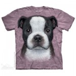TEE SHIRT ENFANT CHIOT BOSTON TERRIER