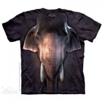 TEE SHIRT ENFANT ELEPHANT ASIATIQUE