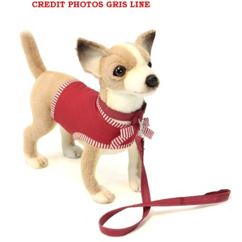 PELUCHE CHIHUAHUA AVEC ROBE ROUGE