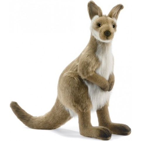 PELUCHE WALLABY