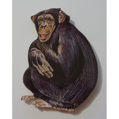 MAGNET CHIMPANZE