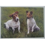 SET DE TABLE JACK RUSSELS