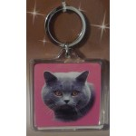 PORTE CLES CHAT BRITISH SHORTHAIR