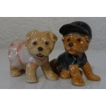 MINIATURE YORKSHIRE BEBE LOT DE 2