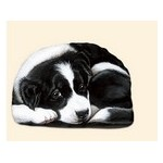 OBJETS DIVERS BORDER COLLIE